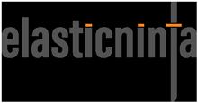 Elastic Ninja Logo